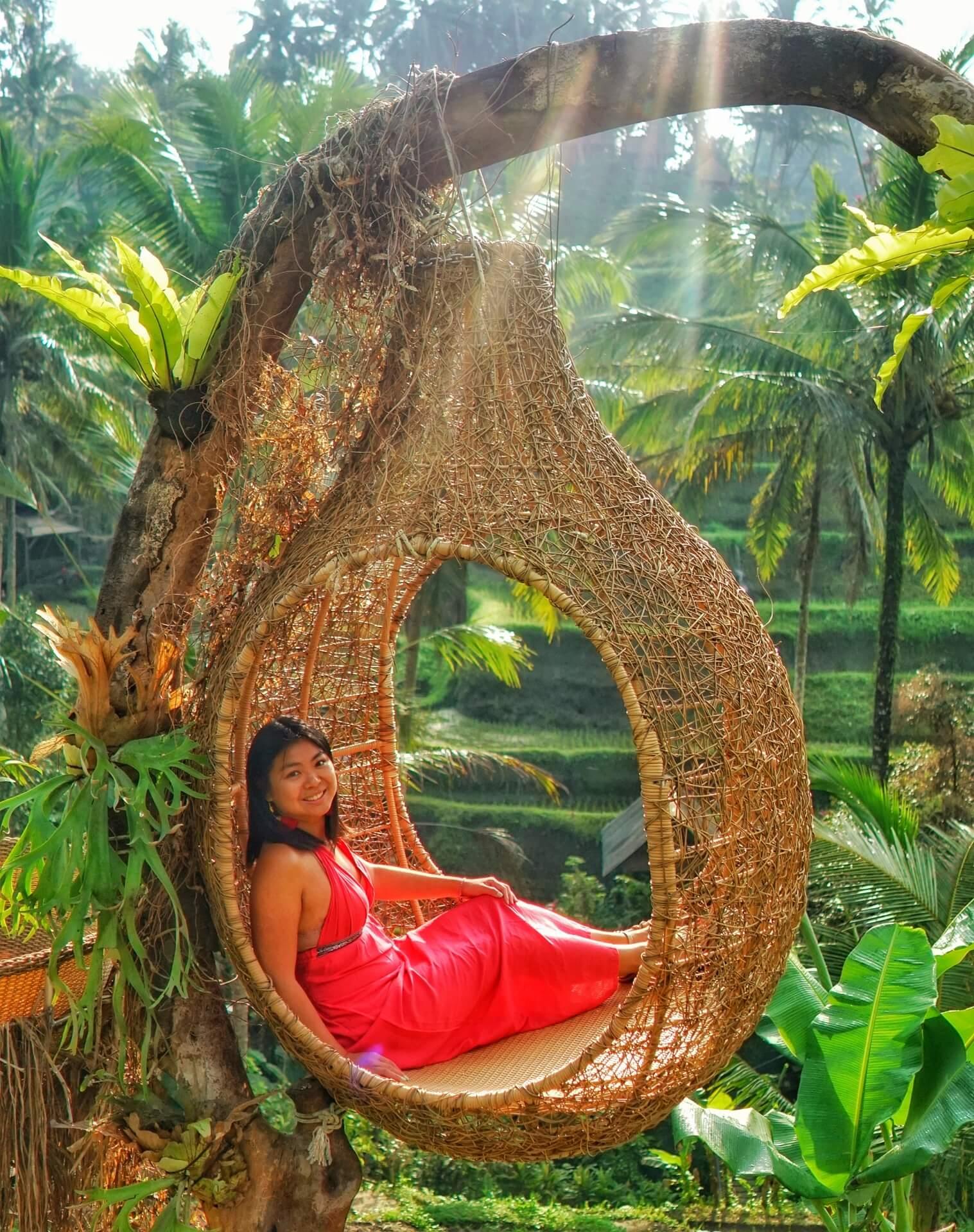 Profile About Me Bali Nest Rice Terrace